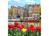 European Medicines Agency moves to Amsterdam and other news from EMA and CMDv