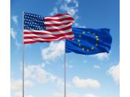Comparison of Veterinary Drug Registration in the USA and Europe