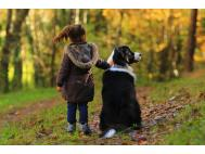 Child_dog_veterinary_medicine_user_safety_EMA_guidance